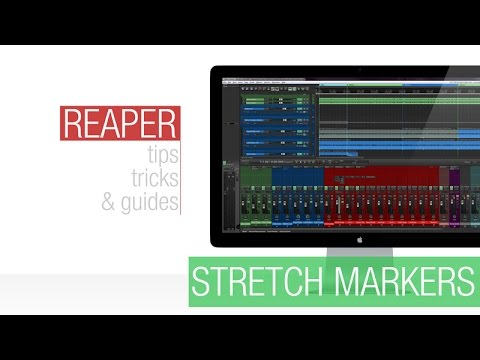 Reaper Tutorial: Stretch Markers – The Basics