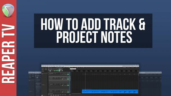 Project & Track Notes in Reaper DAW