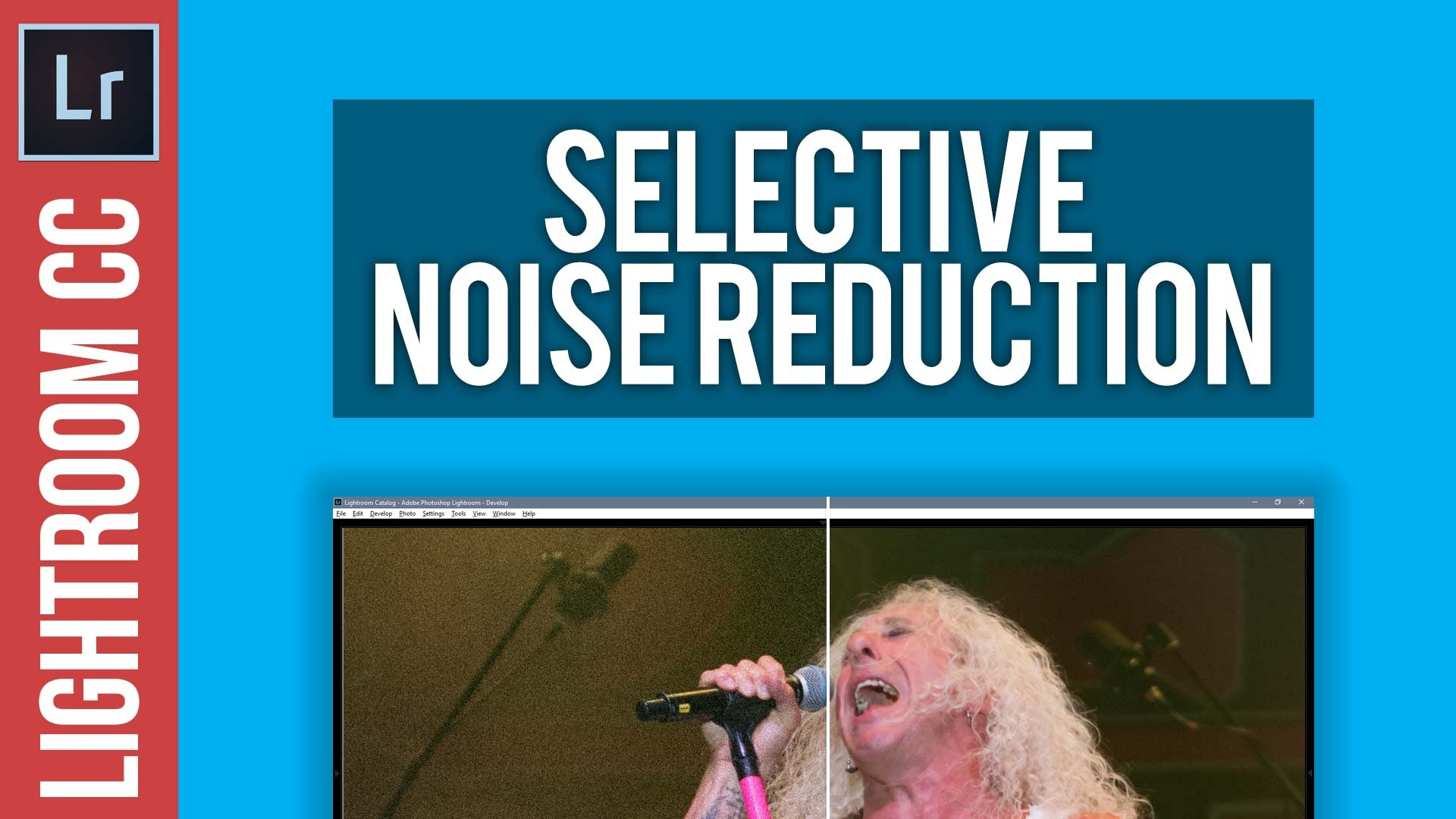 How To Apply Selective Noise Reduction in Lightroom