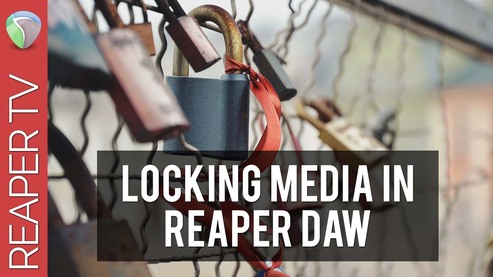 How To Lock Your Media in Reaper